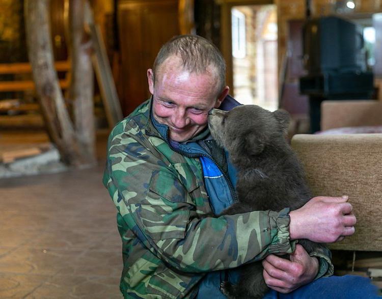 Cachorro de oso y humano abrazado