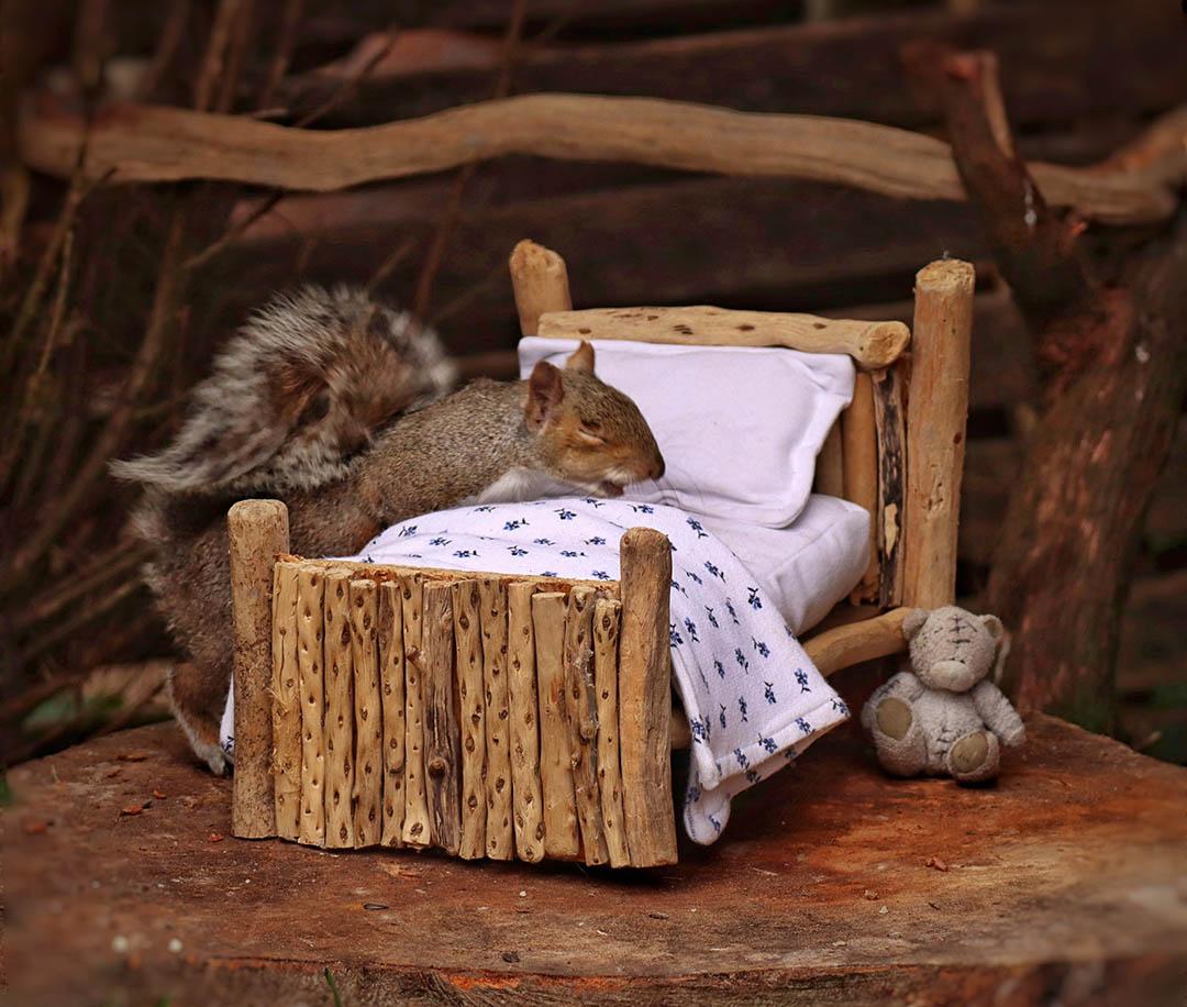 Cirilo durmiendo