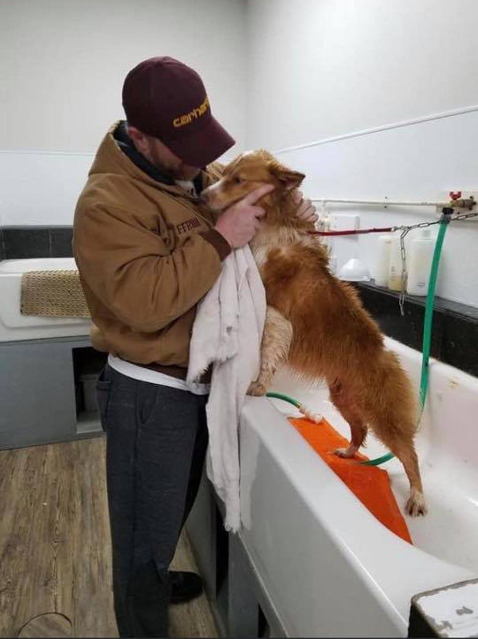 El hombre cuida al perro encontrado