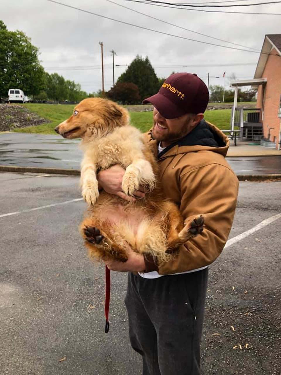 El hombre cría cachorro