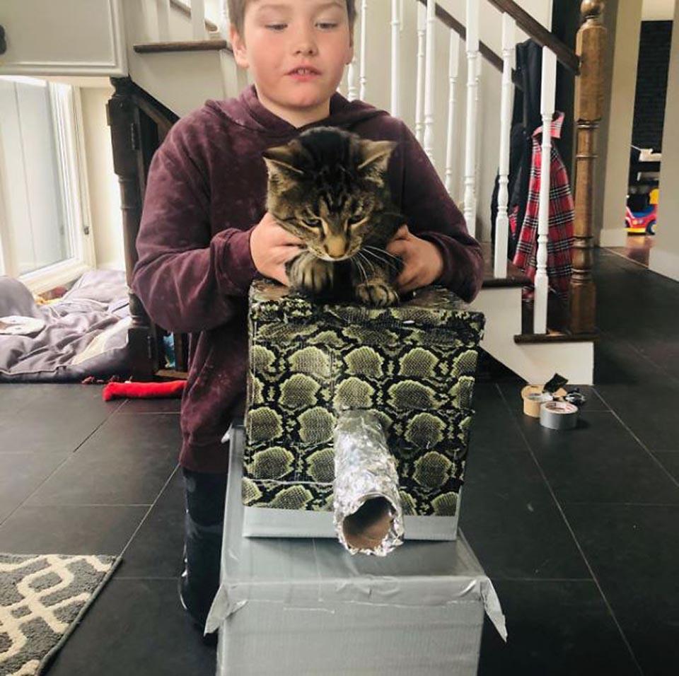 Niño sostiene gato sobre tanque de cartón