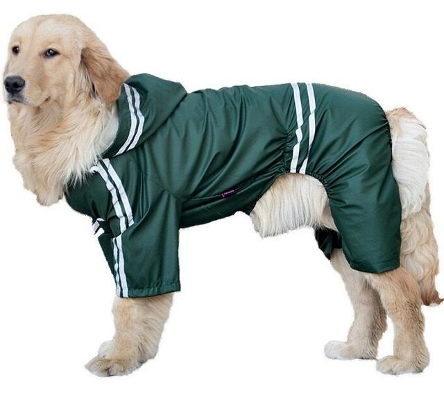 Impermeables para perros de Austion House