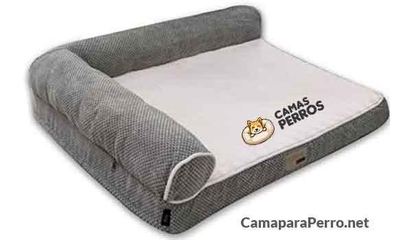 La-Mejor-cama-para-el-Golden-Retriever
